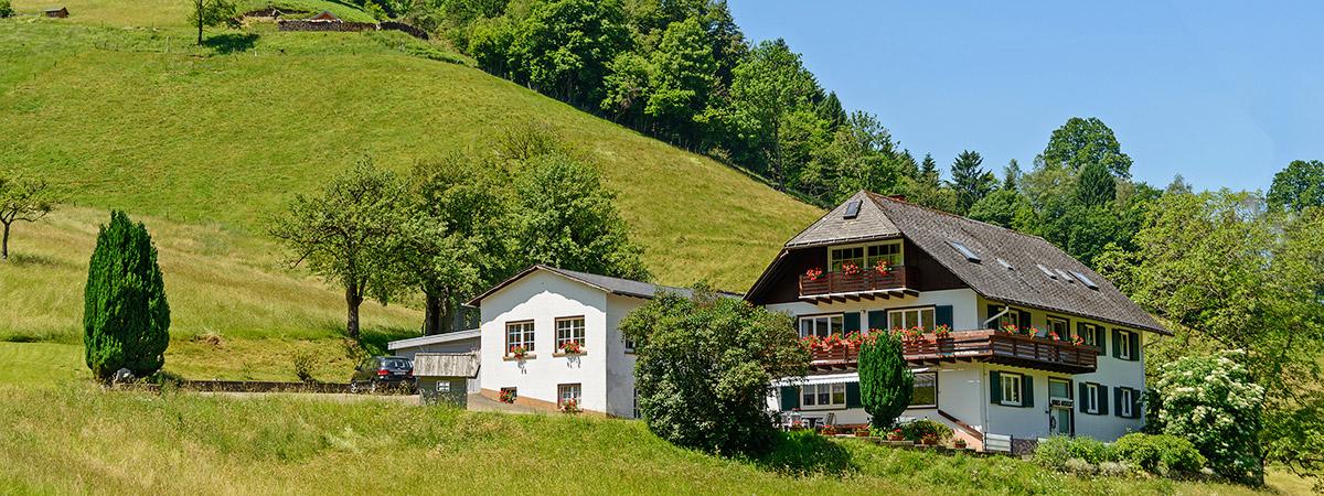 Guesthouse Gisela Munstertal Black Forest Germany